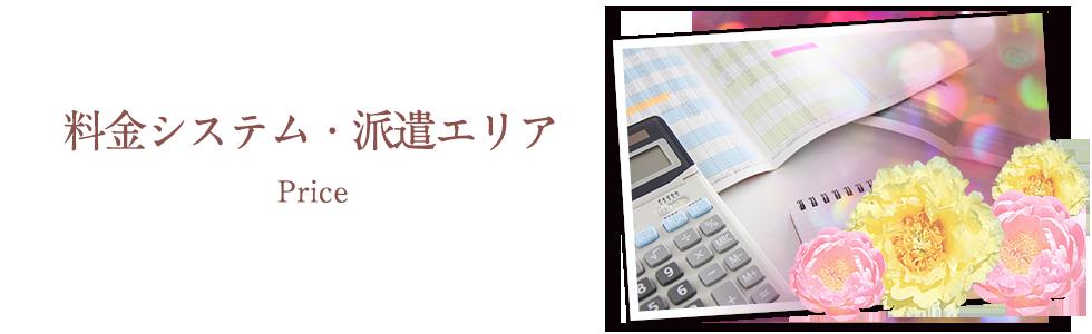 料金システム・派遣エリア